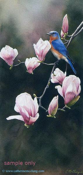 bluebird-magnolia
