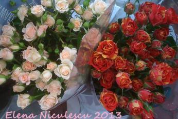 trandafiri 7 martie