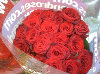 trandafiri rosii 7 martie