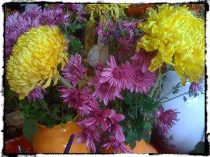 crizanteme13c