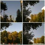 collage cer natura 2oct