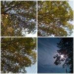 collage cer soare natura 7iulie