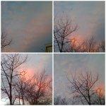 collage apus de soare 28febr