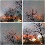collage apus de soare a 28febr