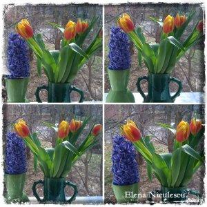 collage flori la geam 8 martie