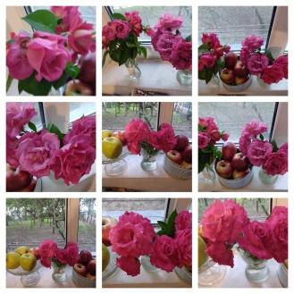 collage trand S 19 iulie